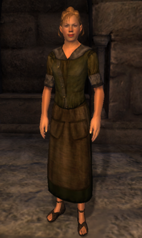 File:TESIV Character AnvilServant.png