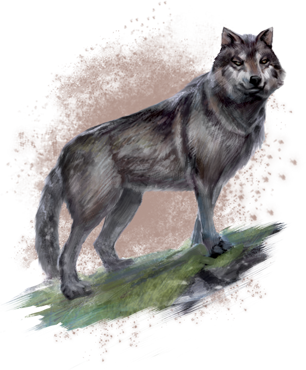 File:WolfOnlineConceptart.png
