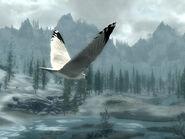Скрин - Белая птица