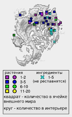 Цветок астры (количество)