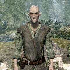 Faendal - przedstawiciel rasy Bosmer