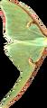 Luna Moth wing.png