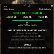 Healers Habit - Shoes 26