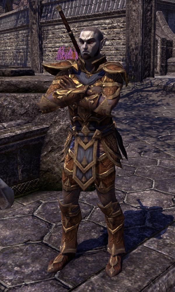 Ordinator Nethis | Elder Scrolls | FANDOM powered by Wikia