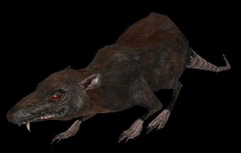 File:Rat MW.png