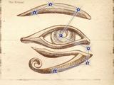 Rytuał (znak zodiaku)