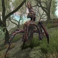 SI-creature-Elytra (Dementia)