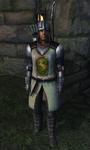 TESIV Guard Leyawiin 1