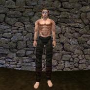 Простые штаны (Morrowind) 4 (муж)