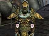 Redoran Guard (Morrowind)