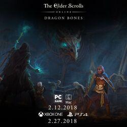 The Elder Scrolls Online Dragon Bones Cover