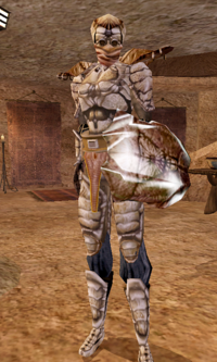 Buoyant Armigers - Morrowind