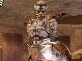 Buoyant Armiger (Morrowind)