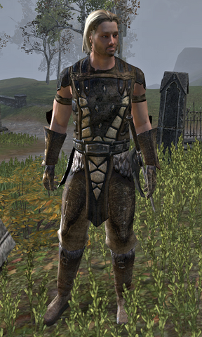 File:Harald Winvale.png