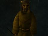 Rogue Necromancer
