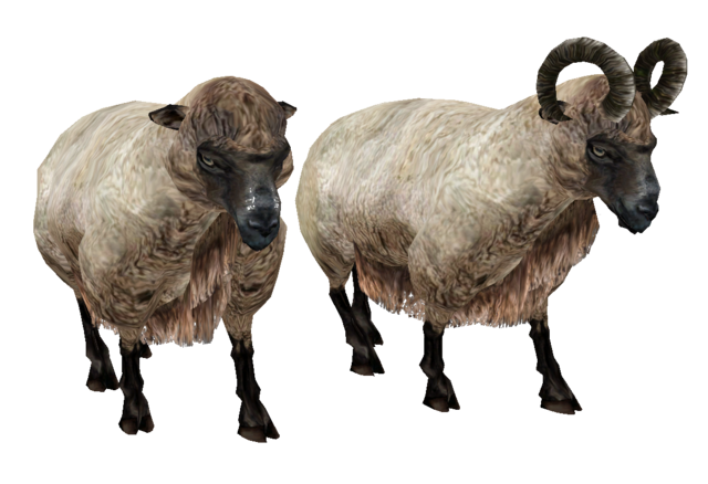 File:Beast oblivion sheep.png