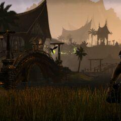 Khajiit odmiany Suthay-Raht z gry The Elder Scrolls: Online