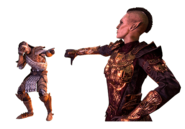 Morrowind PvP Battleground Taunt Emote