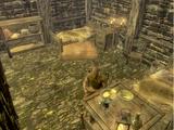 Jail Break (Skyrim)