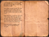 Ralion's Journal, Day 132