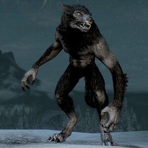 Wilkołak (Skyrim)-0