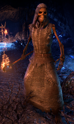 File:ESO Skeletal Pyromancer.png