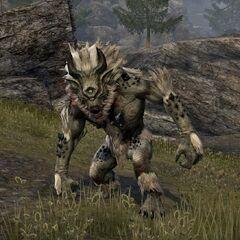 Biały troll z gry The Elder Scrolls Online