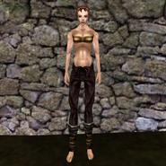 Простые штаны (Morrowind) 13 (жен)