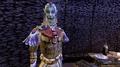 Ahemmusa Nerevarine - Morrowind.png