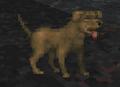 Dog (Daggerfall).png
