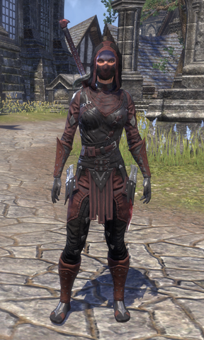 File:ESO Costume - Shrouded Armor.png