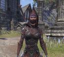 Shrouded Armor (Costume)