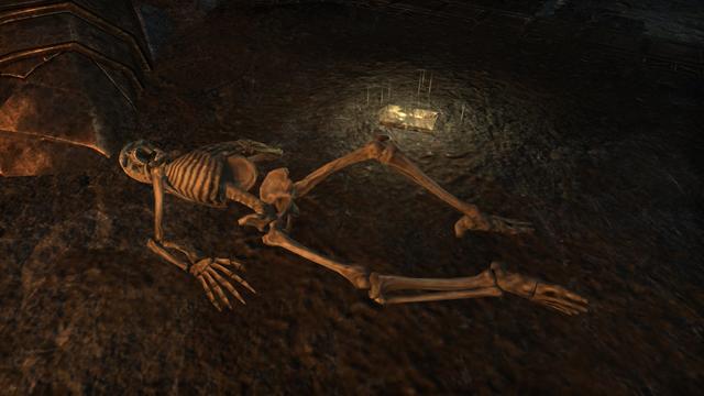 File:Endarre Skeleton.png