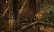TES3 Morrowind - Balmora - Dura gra-Bol's House interior - key location