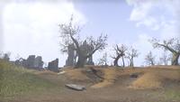 Сиродил (Online) — Осквернённый Нагастани