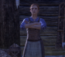 Aera Earth-Turner