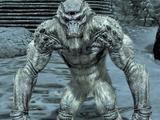 Troll del gelo (Skyrim)