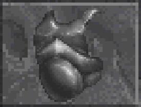 Steel Cuirass (Daggerfall) - 3