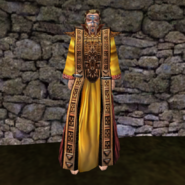 Изящная мантия (Morrowind) муж