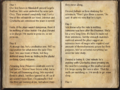 Bazorgbeg's Expeditionary Journal Pages 1-2.png