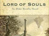 The Elder Scrolls. Повелитель душ