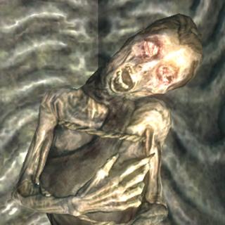 Nocna Matka