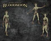 Спригган, дополнение BloodMoon
