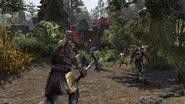 ESO Morrowind screenshot 2