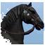 Gaited Horse Online