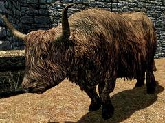 Cow Skyrim