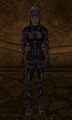 Domina armor.png