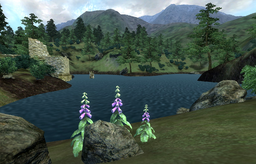 Lake Canulus