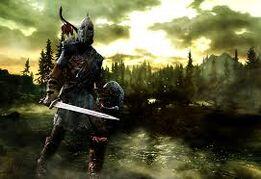 Soldato dei Manto della Tempesta