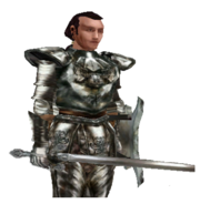 Афер Флаккус на страже